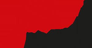 Alniko_logo